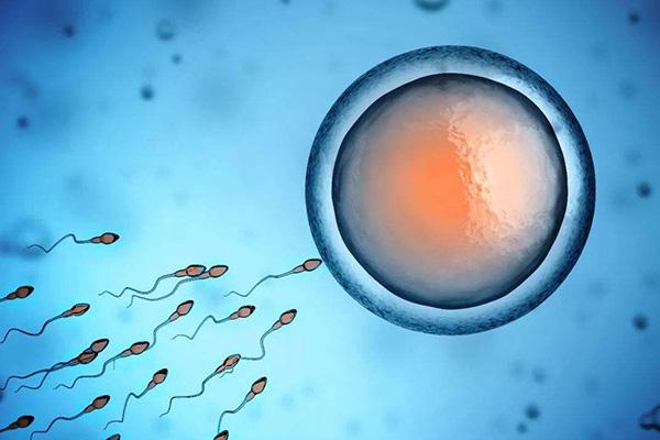 精子总活力多少为正常