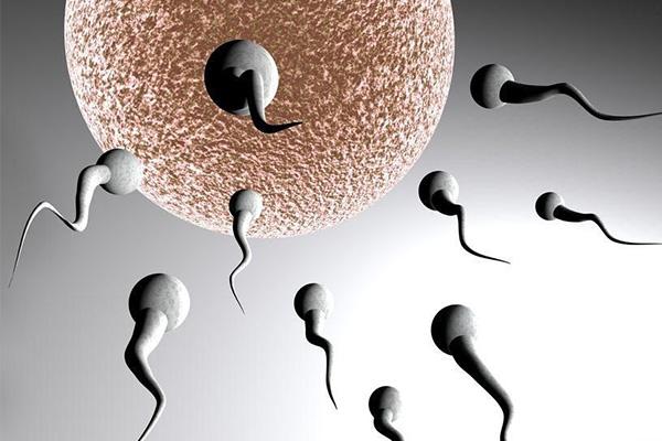 精子少怎么办