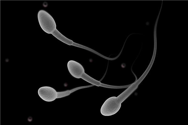 精子长什么样?如何才能补精?