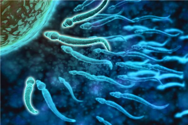 男人的精子成活率多少正常?如何提高精子成活率?