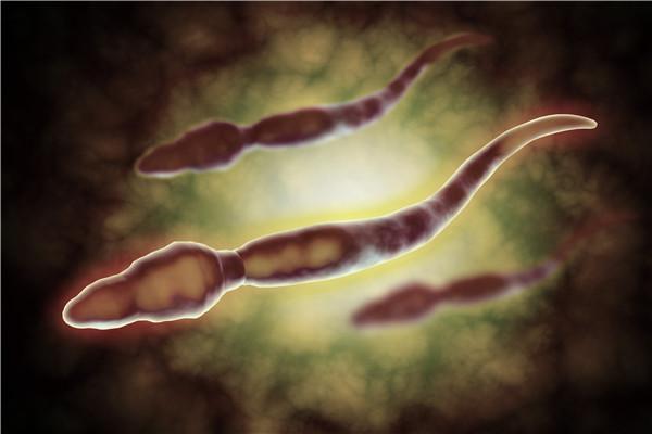 锌能提高精子活力吗?吃什么补锌?