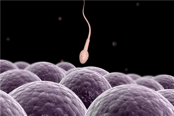 精子质量差有什么表现?快看看你中招了吗?