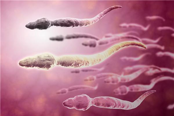 影响精子质量的原因有哪些?这些行为备孕者需注意